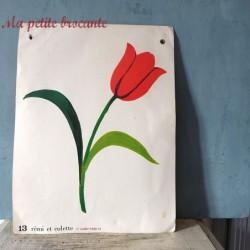 Affiche scolaire Rémi et Colette recto verso n° 13 et n° 40