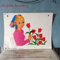 Affiche scolaire Rémi et Colette recto verso n° 15 et n° 42